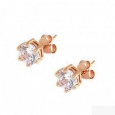 Καρφωτά σκουλαρίκια ασημένια με ζιργκόν